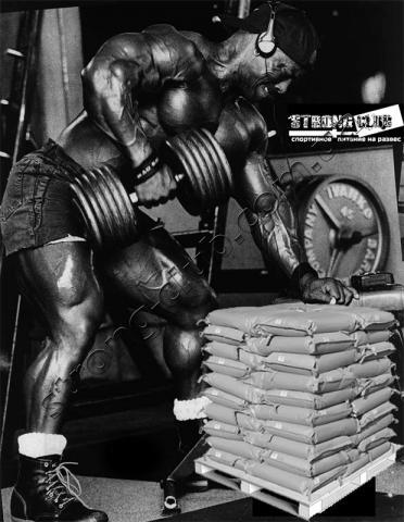 Лучший протеин на развес